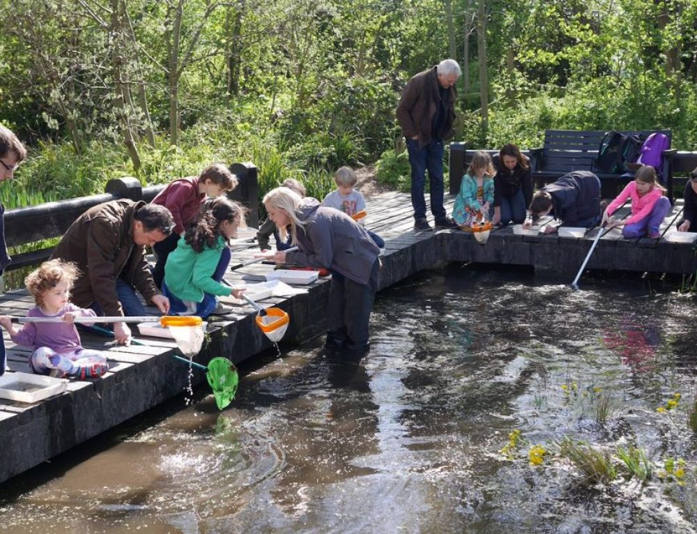 London Wildlife Trust awarded Heritage Lottery funding after LUC masterplan
