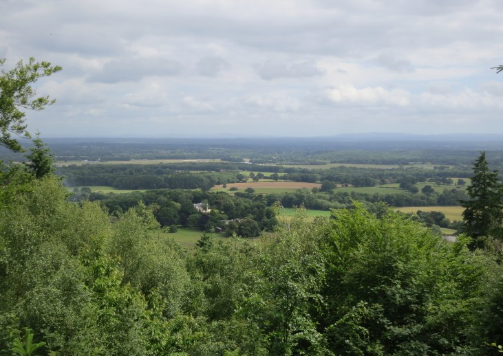 View from the Surrey Hills AONB