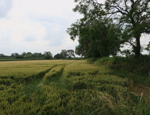 LUC working with Blaby District Council to produce landscape and settlement evidence