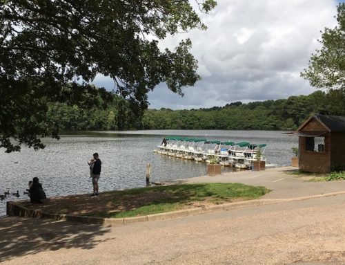 LUC to carry out appraisal of iconic Sutton Park
