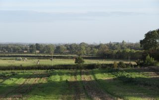 Cosby Agricultural Parkland, Blaby